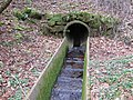 Culvert in Consall Nature Park - geograph.org.uk - 1213640.jpg