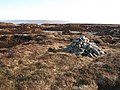 Currick on Chapelfell Top - geograph.org.uk - 694593.jpg