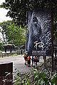 DKoehl zoo negara elephants.JPG