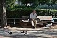 DSC-0160-athens-greece-august-2017-bench.jpg