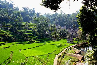 Hamlet (place) - The hamlet Kampung Naga in West Java Province, Indonesia