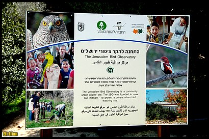 איך מגיעים באמצעות תחבורה ציבורית  להתחנה לחקר ציפורי ירושלים? - מידע על המקום