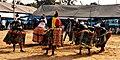 Danse1 du vodoun sakpata lors d'une cérémonie enterrement à comé au Bénin.jpg