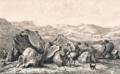 Das Varusfeld.webp