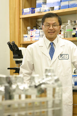 David Ho in lab
