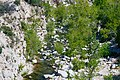 Deep Creek Hot Springs 03.jpg