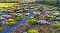 Delaware Botanic Gardens.jpg