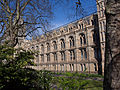 Denis Bourez - Natural History Museum, London (8900310967) (2).jpg