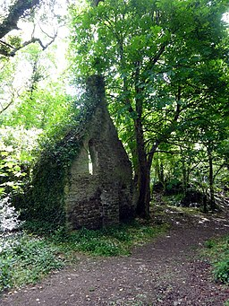 Derelict house in the woods - geograph.org.uk - 2403113