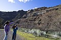 Deschutes Wild and Scenic River -- Beavertail (26055935811).jpg