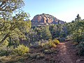 Devil's Bridge Trail, Sedona, Arizona - panoramio (14).jpg