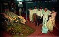Dignitaries Watching Ankylosaurus - Dinosaurs Alive Exhibition - Science City - Calcutta 1995-06-15 046.JPG