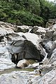 Dolina reke Vučjanke 18.jpg