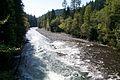 Downriver Marmot Dam.jpg