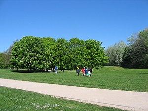 Base De Plein Air Et De Loisirs Du Port Aux Cerises Wikipedia
