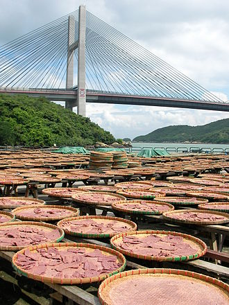 Shrimp paste - Shrimp paste being dried under the sun in Ma Wan, Hong Kong