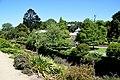 Dunedin Botanic Garden 06.jpg