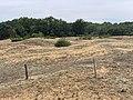 Dunes Charmes Sermoyer 13.jpg