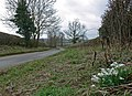 Dunton Lane south of Dunton Bassett - geograph.org.uk - 719969.jpg