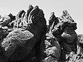 ETNA (Sculture di Lava Ninja) - panoramio.jpg