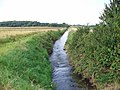 East Halton Beck - geograph.org.uk - 521344.jpg