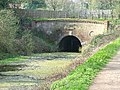 Eastern entrance to the Greywell Tunnel - geograph.org.uk - 7104.jpg