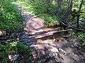 "Ecological path Lisnyky crosses a small stream - Екологічна стежка ""Лісники"" перетинає струмок - panoramio.jpg"