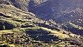 El Hamdania - Médéa الحمدانية - المدية - panoramio (5).jpg