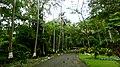 El Salvador - El Balsamar - panoramio (9).jpg