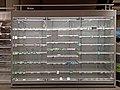 Empty butter shelves in AH Delft 01.jpg