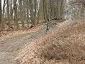 Essex west trail steep jeh.jpg
