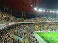 Estádio Municipal de Aveiro - Portugal (84489059).jpg