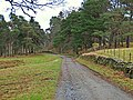 Estate Track, near to Aberuchill - geograph.org.uk - 670061.jpg