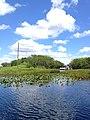 Everglades Nationalpark Florida (22037258798).jpg