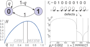 Maximal entropy random walk - Left: choosing the optimal probability after symbol 0 in Fibonacci coding. Right: one-dimensional defected lattice and its stationary density for length 1000 cycle (it has three defects). While in standard random walk the stationary density is proportional to degree of a vertex, leading to 3/2 difference here, in MERW density is nearly completely localized in the largest defect-free region, analogous to the ground state predicted by quantum mechanics.