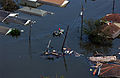 FEMA - 14988 - Photograph by Jocelyn Augustino taken on 08-30-2005 in Louisiana.jpg