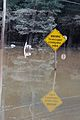 FEMA - 42051 - Flood Warning Sign in Flooded Georgia Area.jpg