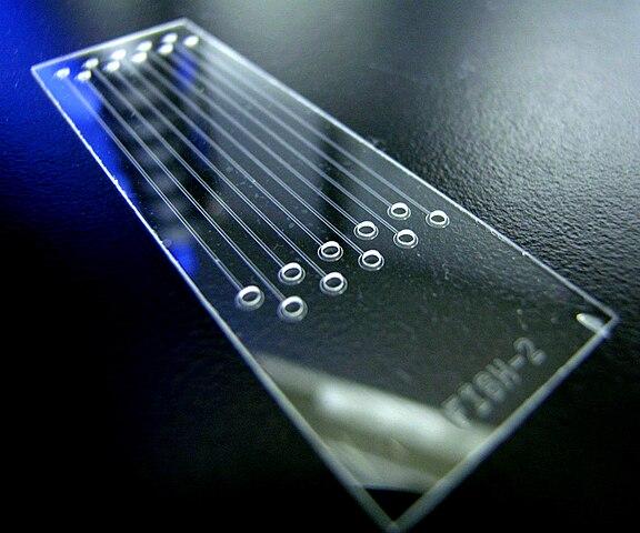 Ebay Glass Etching