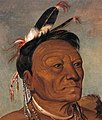 Face detail, George Catlin - Wee-tá-ra-shá-ro, Head Chief of the Tribe - 1985.66.55 - Smithsonian American Art Museum (cropped).jpg