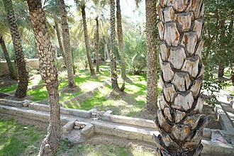 Tawam (region) - Falaj at Al Ain Oasis, one of a number found in this region