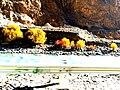 Fall in Hunza-basraa-12.jpg