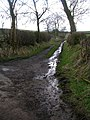 Farm Track off Knot Lane - geograph.org.uk - 1193283.jpg