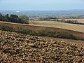 Farmland near Ewelme Park - geograph.org.uk - 677087.jpg