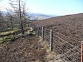 Fence replaces dry stane dyke - geograph.org.uk - 771162.jpg