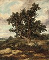 Ferdinand Bellermann - Tree on a mountain pass.jpg