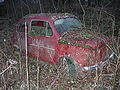 Fiat 600 in a forest.JPG