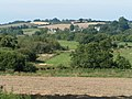 Fields west of Killerton woods - geograph.org.uk - 966039.jpg