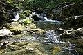 Fiume Rio Verde - panoramio (1).jpg