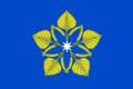 Flag of Olkhovskoe (Volgograd oblast).png