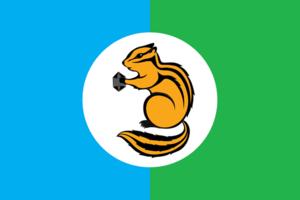 Ust-Ilimsky District - Image: Flag of Ust Ilimsky rayon (Irkutsk oblast)